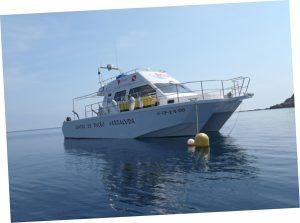 buceo islas columbretes barracuda cat