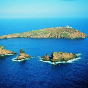 excursiones islas columbretes