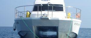 viajes columbretes barracuda cat