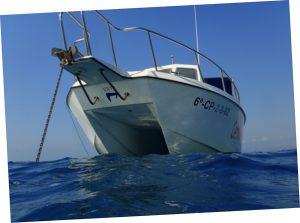 viajes islas columbretes cuatro barracuda